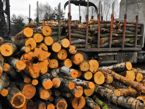 Drewno kominkowe(dąb brzoza buk olcha akacja grab ) TRANSPORT GRATIS !