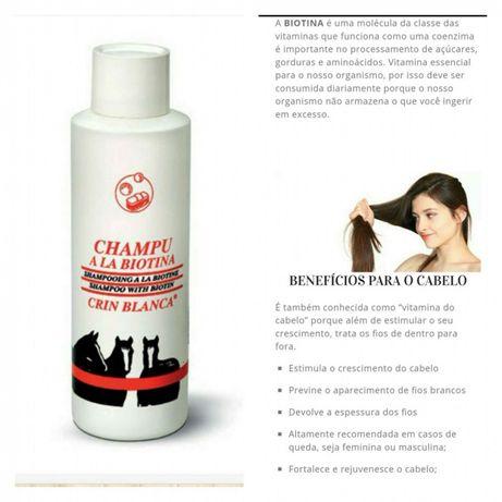 Shampoo biotina