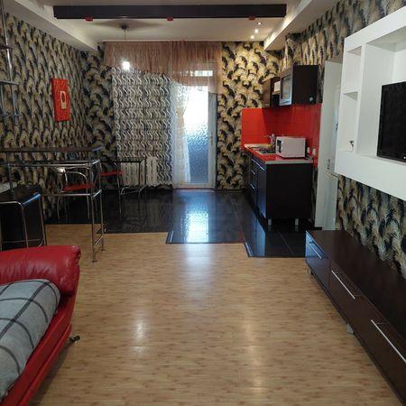 Почасово квартира -студия на Правде(район ТЦ Мельница).