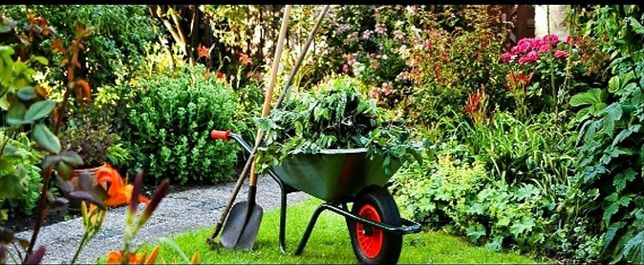 Usługi ogrodnicze.