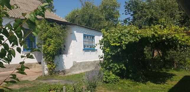 Будинок в центрі села Черкас