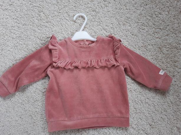 Newbie bluza welurowa 68