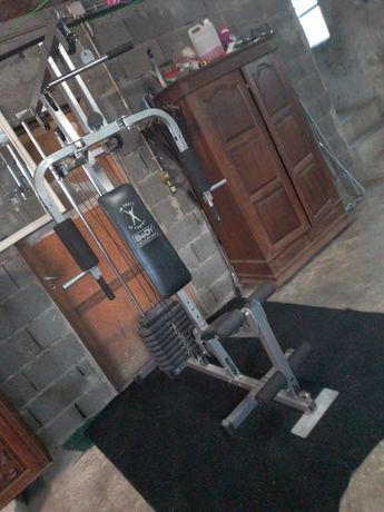 Troco máquina de musculação por gaiolas para agapornis ou aves