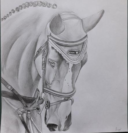 Лошадь. Рисунок карандашом.