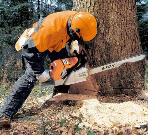 Спил деревьев любой сложности, без посредников.Опыт работы.
