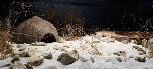 Podłoże do terrarium pustynnego - Desert Floor 15 kg
