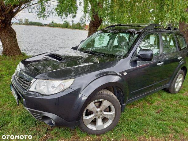 Subaru Forester SUBARU Forester Disel, wyposażony, Salon Polska, pierwszy właściciel