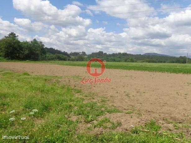 Terreno agrícola, para venda, Braga - Adaufe