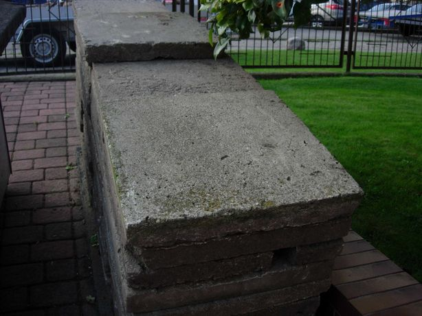 Płytki chodnikowe 50x50x5 cm