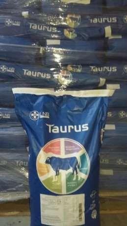 Konc. dla opasów z lnb 20 kg taurus