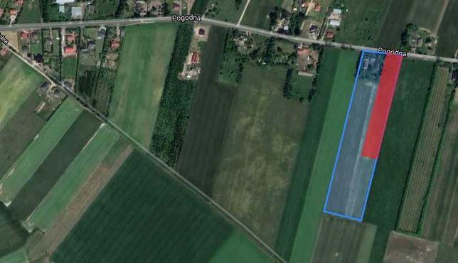 Sprzedam działkę 1 ha w Głobinie, 7 km od Słupska