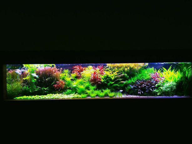 Продам аквариум б/у