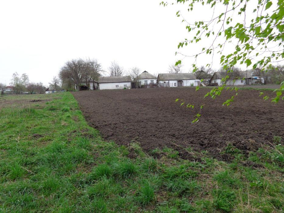 Продам дом с огородом у реки 20 соток в Бобровице Бобровиця - зображення 1