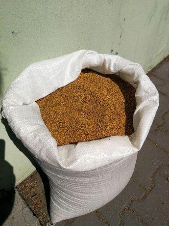gorczyca poplonowa czysta 25kg