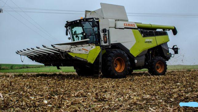 Zbiór koszenie usługa omłot omłotu zbóż kombajnem Claas Lexion 6800