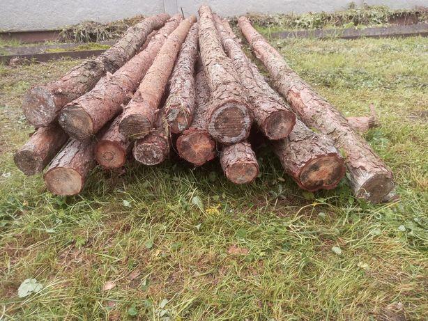 Stemple sosnowe, kołki na ogrodzenie 280 cm, 220 cm