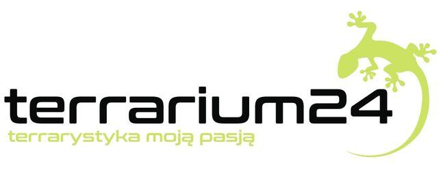 Terrarium24 sklep terrarystyczny w Lublinie gady akcesoria karma owady