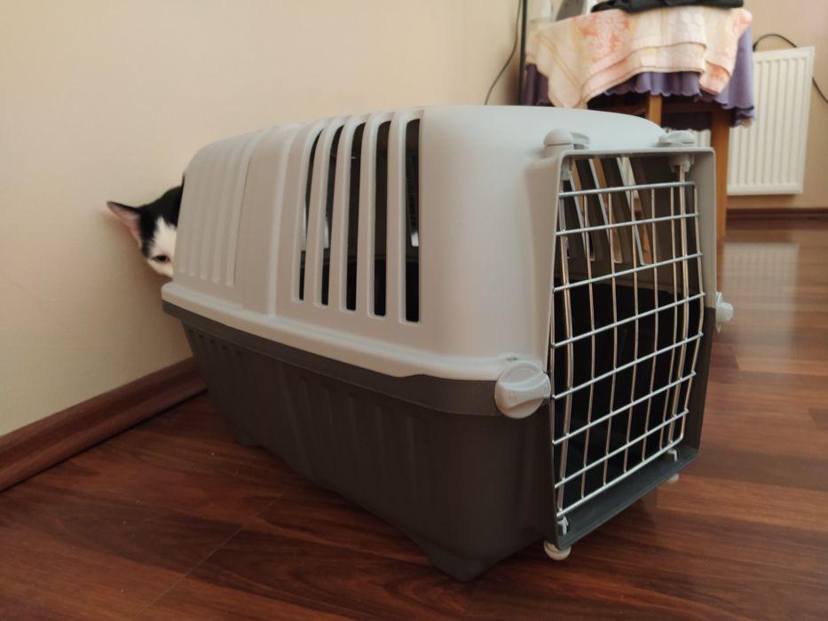 Transporter dla kota Myślibórz - image 1