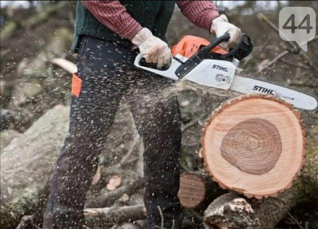 Зрізка дерев, порізка, порезка , спилювання дерево, альпінізм