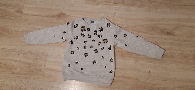 Bluza dla dziewczynki NEXT 122