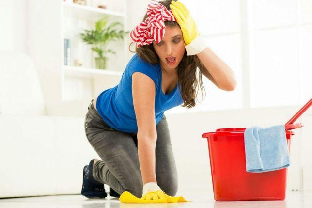 Sprzątanie domów, mieszkań, biur i innych lokali, mycie okien
