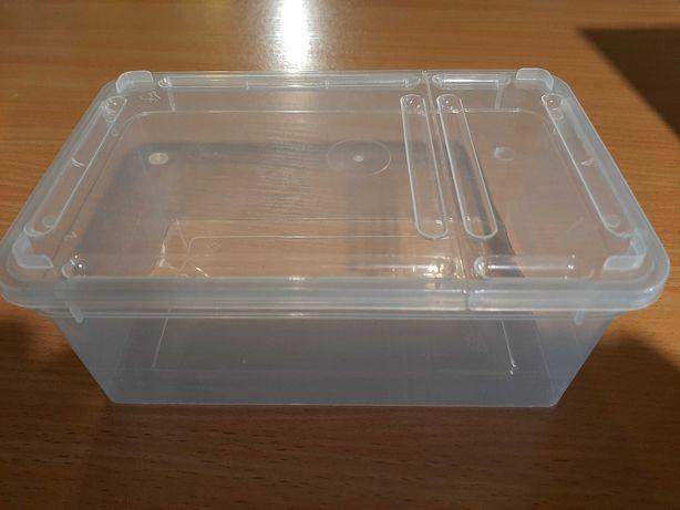 Pojemnik pudełko braplast 19x12x7,5 Terrarium24 Lublin