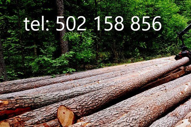 Więźba dachowa, deska ,łaty,drewno budowlane na dach ,tartak,transport Grajewo - image 1