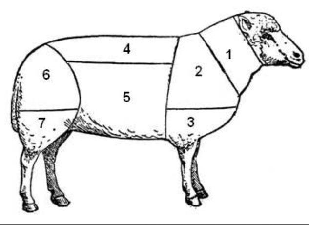 Баранина на мясо