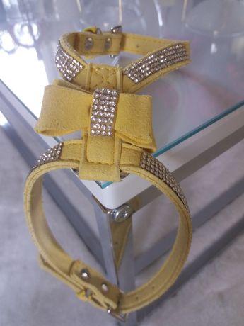 Skórzane szelki dla psa kota cyrkonie Swarovski M żółte bezuciskowe