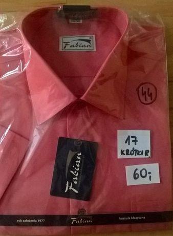 Nowe koszule męskie FABIAN, duże rozmiary - każda po 50 zł