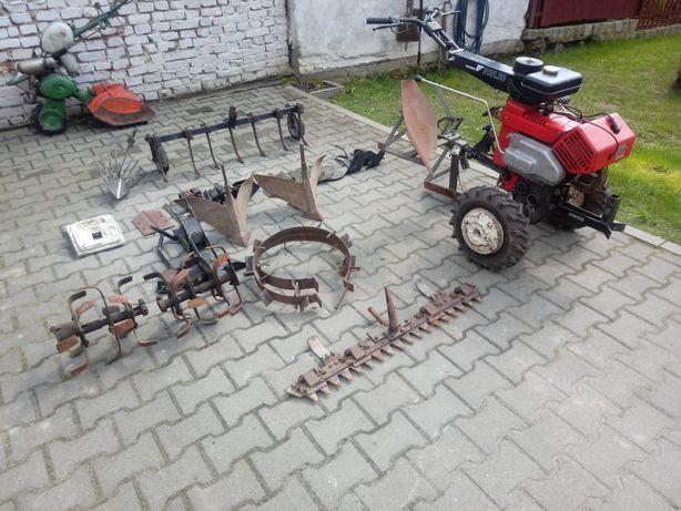 Traktorek, ciągniczek, dzik, glebogryzarka fotrschritt