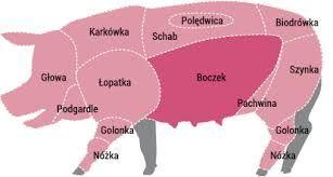 Wieprzowina Bio z certyfikatem
