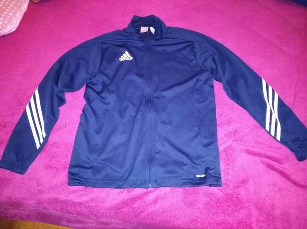 Casaco Adidas Oficial