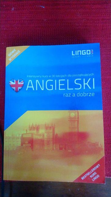 Kurs angielskiego płyta i książka