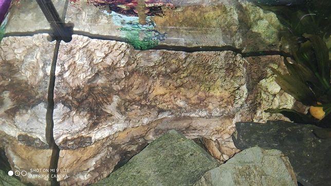 Skała narożna kamień do akwarium terrarium