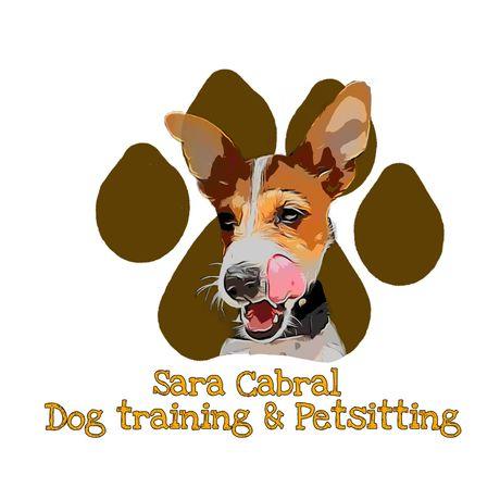 Treino de cães e petsitting