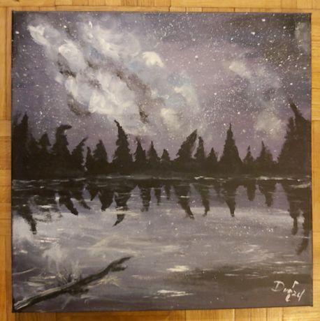 Obraz ręcznie malowany na płótnie Las / Jezioro / Noc
