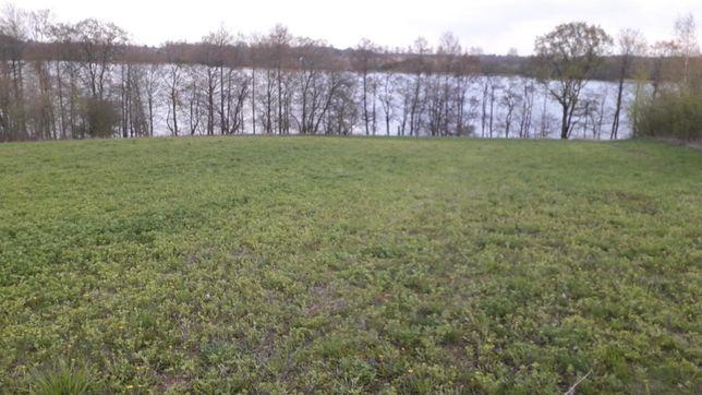 Działka z linią brzegową jeziora Przytulskiego 20 zł m2
