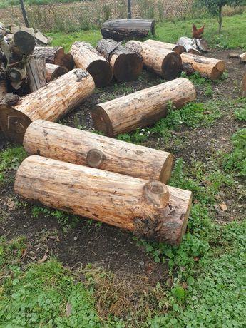 Drewno/ modrzew/