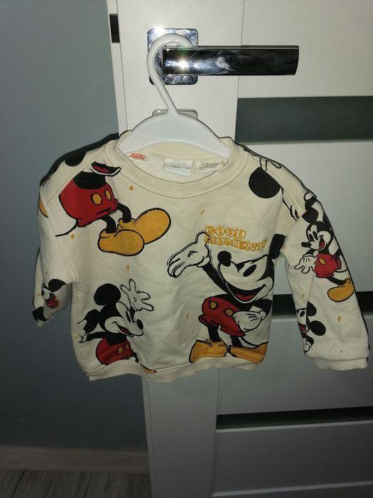 Bluza zara miki 80 Mrozowo - image 1