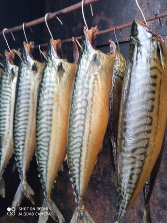 Рибка домашнього копчення.