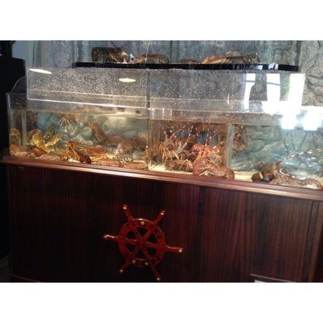 Vendo aquário para Sapateiras