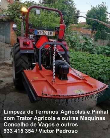 Faço Limpeza de Terrenos e Pinhais,com trator agrícola e mais máquinas