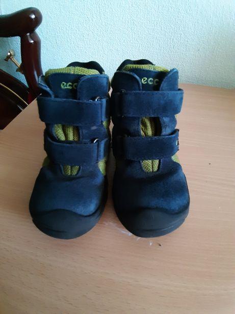 Зимние ботинки для мальчика фирма Ecco