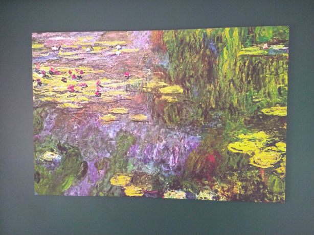 Monet Nenufary obraz 120x80