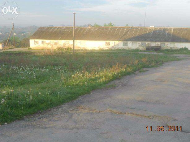 продаж ферми у хмельницькій області