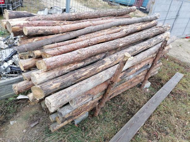 Stemple Budowalne około 100szt 2.5m i 50szt 2m