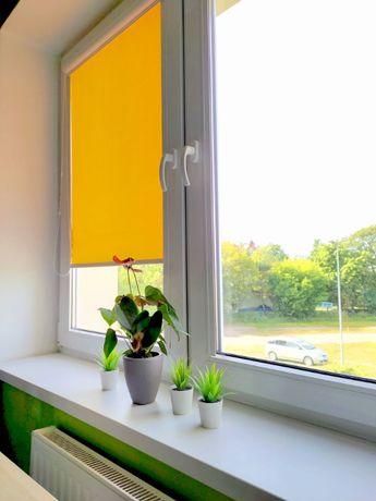 Roletki na okna w kasetkach o szerokości 66,5 cm - 2 szt.