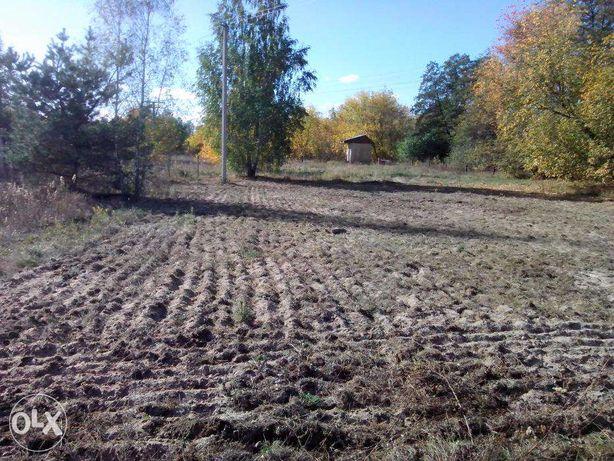 Земельный участок в Броварском районе