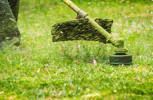 Качественный покос травы бурьяна